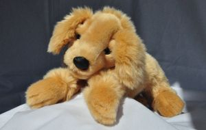 Hund Golden Retriever 42 cm